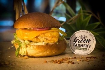 Le Fish Burger dans sa version Vegan